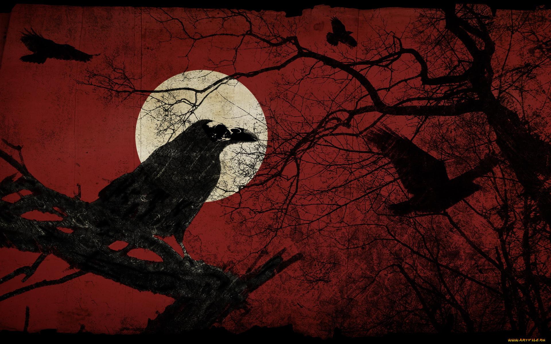 смышлённый картинка ворон на фоне луны причины